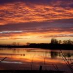 Zonsondergang nabij Bourgoyen-Ossemeersen